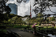 Tokyo, October 8 2012 - Wedding pictures at Shibakoen.