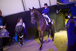 Barbancon Mestre Morgan, ESP, Sir Donnerhall II Old<br /> Jumping Mechelen 2019<br /> © Hippo Foto - Sharon Vandeput<br /> 28/12/19