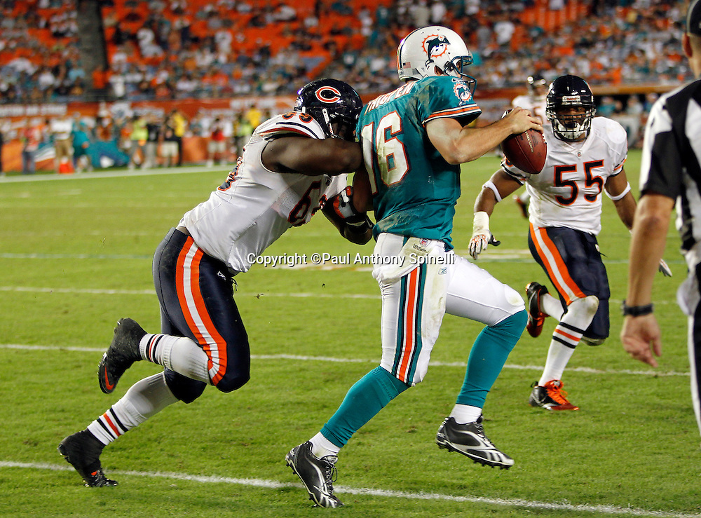 Miami Dolphins quarterback Tyler Thigpen (16) gets shoved out of bounds by Chicago Bears defensive end Henry Melton (69) during the NFL week 11 football game against the Chicago Bears on Thursday, November 18, 2010 in Miami Gardens, Florida. The Bears won the game 16-0. (©Paul Anthony Spinelli)