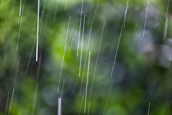 The Effect of Shutter Speed on Falling Rain Set 3-#5