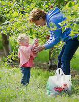 Lindsay Salmon and Marsha McGinley spend Thursday afternoon picking apples together at Stonybrook Farm in Gilford.  (Karen Bobotas/for the Laconia Daily Sun)