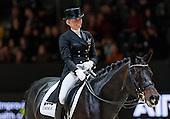 2014 FEI World Dressage & Jumping 2014