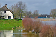 Nederland, The Netherlands, Nijmegen, 28-1-2018Opnieuw is er een golf hoogwater die via de Rijn en Waal ons land passeert op weg naar zee. Het water is iets minder hoog als twee weken geleden. Zicht vanuit de Ooijpolder.Foto: Flip Franssen