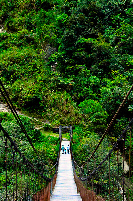 Family crosses a suspended wood foot bridge over the Rio Pastaza in the upper Amazon Basin outside Banos, Ecuador.