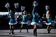 December 23, 2018. Panthers vs Falcons. Cheerleaders