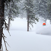 Powder skiing in the trees with Lynsey Dyer.