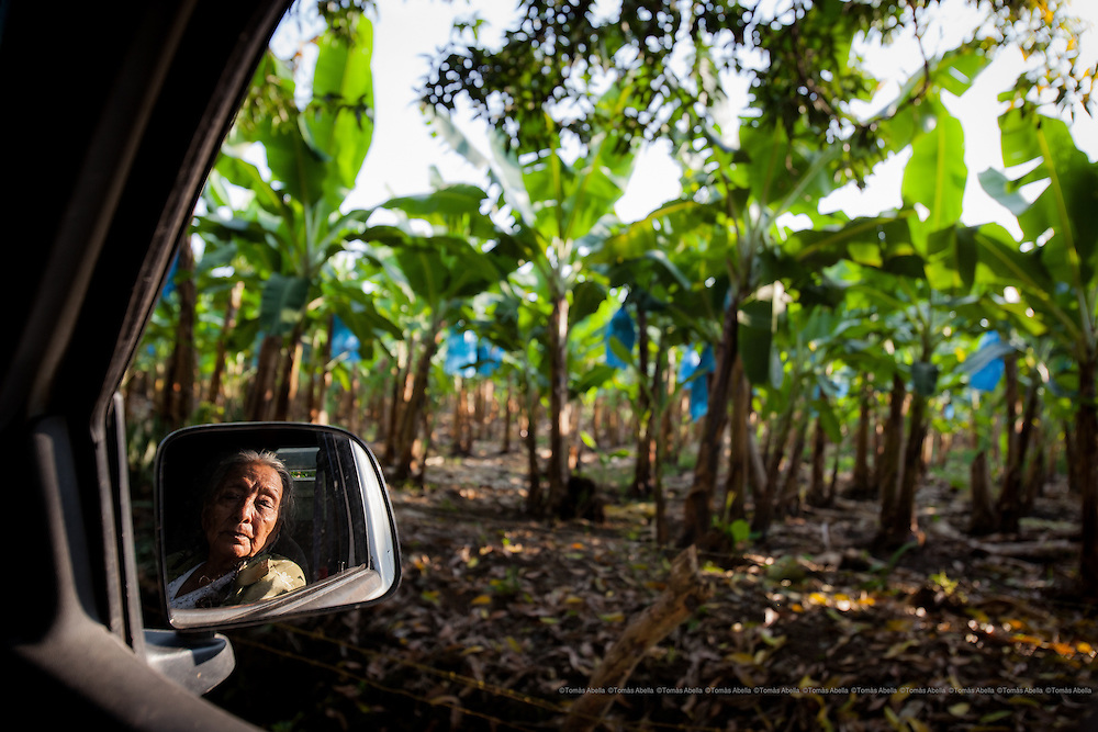 "Demetria Gutiérrez has been growing cocoa for more than fifty years. Doña Demetria, who has always refused to sell her cocoa plantation to the banana companies, is also known in her community as ""The Resistant"". Tapachula, Mexico."
