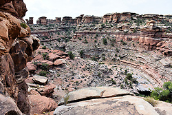 Canyonlands National Park - South, Moab, Utah, USA