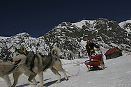Photo by Barton Glasser.Dogsledding near Silverton, Colo.