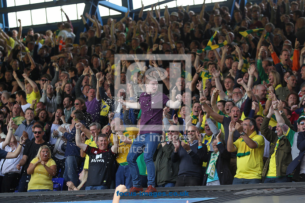 The Norwich fans celebrate their side's goal during the Sky Bet Championship match at Portman Road, Ipswich<br /> Picture by Paul Chesterton/Focus Images Ltd +44 7904 640267<br /> 23/08/2014
