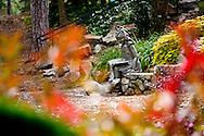 Rock Quarry Garden - Downtown Greenville, SC