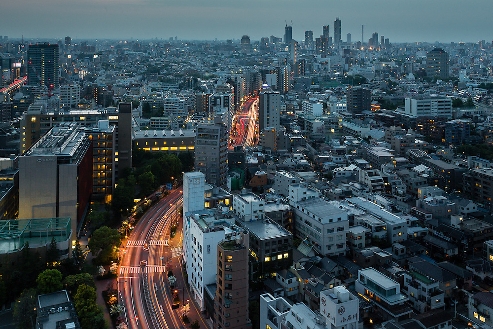 The city of Tokyo as it sprawls out in the evening.