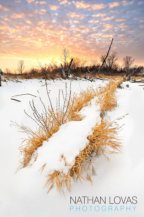 Winter sunset with snow covered grass and colorful sky;  Anderson Lakes Park, Eden Prairie, MN.
