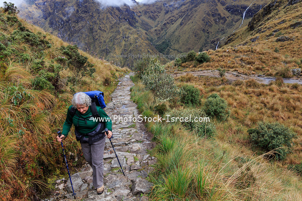 Inca Trail to Machu Picchu (also known as Camino Inca). Located in the Andes mountain range, the trail passes through several types of Andean environments including cloud forest and alpine tundra. Settlements, tunnels, and many Incan ruins are located along the trail before ending at the Sun Gate on Machu Picchu mountain.