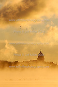 With temperatures near zero degrees during a winter sunrise, a flock of geese fly past a silhouette of the Wisconsin State Capitol building and downtown Madison, WI skyline as steam rises from not-yet-frozen waters of Lake Mendota..Photo © Jeff Miller 2004 - all rights reserved.www.jeffmillerphotography.com  ?  608-250-2374.Date:  12/04    File#:   D100 digital camera frame 11208