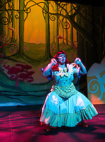 Sleeping Beauty dress rehearsal at Winnipesaukee Playhouse.  Karen Bobotas for the Laconia Daily Sun