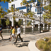 UCSD Academic Court<br /> Spurlock Poirier - University of California<br /> Spurlock Poirier (landscape designers for The Getty) designed this intimate open space on the University of California San Diego Campus in late 2005. This academic courtyard is bordered by three buildings created by architectural giants: NBBJ, Bohlin Cywinski Jackson & CO Architects. An enormous Tim Hawkinson sculpture anchors the center of the courtyard. Spurlock Poirier (landscape designers for The Getty Center in Los Angeles) designed this intimate open space on the University of California San Diego Campus in late 2005. This academic courtyard is bordered by three buildings created by architectural giants: NBBJ, Bohlin Cywinski Jackson & CO Architects. An enormous Tim Hawkinson sculpture anchors the center of the courtyard.