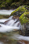 Moss covered rocks along Sowerby Creek in Silver Lake Provincial Park near Hope, British Columbia, Canada