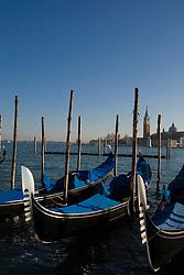 Gondolas in the Bacino di San Marco, Venice, Italy / Italia December 4, 2007.