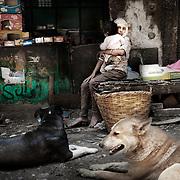 """Una joven sostiene a un niño frente a una tienda de comestibles en el barrio de Mokattam . En medio del barrio de Manshiet Nasr a las afueras de El Cairo esta situado el asentamiento de Mokattam conocido como la """"Ciudad de la Basura"""" , está habitado por los Zabbaleen ,una comunidad de unos 45.000 cristianos coptos que viven desde hace varias décadas de reciclar los desperdicios que genera la capital egipcia: plástico, aluminio, papel y desechos órganicos que transforman en compost . La mayoría forman parte de la Asociación para la Protección del Ambiente (APE) una ONG que actúa en el área, cuyos objetivos son proteger el medio ambiente y aumentar el sustento de las recuperadores de basura de El Cairo. Según la ONU, el trabajo que se realiza en Mokattam como uno de los diez mejores ejemplos del mundo en el mejoramiento medioambiental. El Cairo , Egipto, Junio 2011. ( Foto : Jordi Camí )"""