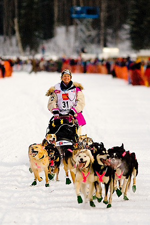 05 March 2006: Willow, Alaska - Fan favorite and cancer survivor, DeeDee Jonrowe heads across Willow Lake during the restart of the 2006 Iditarod in Willow, Alaska
