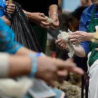 Eva Stephenson, right, feels her wool during the wool workshop held at the Navajo Nation Museum in Window Rock Wednesday. The wool was donated from Navajo Churro sheep in Fort Defiance and a farm in Wisconson.