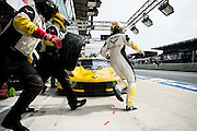 June 8-14, 2015: 24 hours of Le Mans - #64 CORVETTE RACING, Tommy MILNER