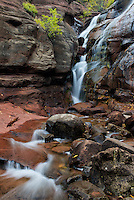 Hayes Creek Falls is a roadside waterfall near Redstone, Colorado.