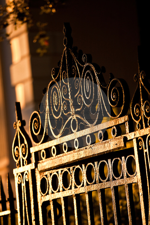 Wrought iron gate work detail in Charleston, SC.
