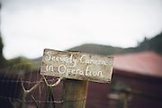 snow flake and amy's wedding april 2016 blue duck station farm wedding cool ideas for your wedding 2016/2017 flowers venue's nibbles dresses sign boards dressing up your pets props for photos ceremony styling photo booths bands cakes and more