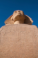 Looking up at the Sphinx and the hieroglyphics engraves on the front, at Giza, Egypt.