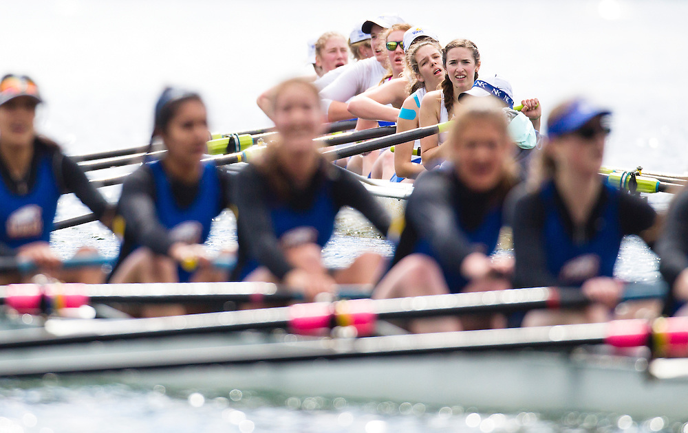 The University of British Columbia UBC reserve Womens rowing crew finished second to the University of Victoria Uvic Womens reserve rowing crew stroked by Emily Garry in the 2014 Brown Cup challenge duel race held along the Gorge Waterway in Victoria British Columbia Canada. Photograph by: KEVIN LIGHT.