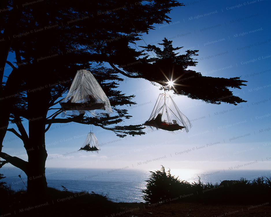Tree Climbing 0028a Three Porta Ledges On Ocean With Fog Louie