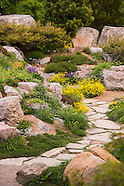 20160512 Rock Alpine Garden in Spring