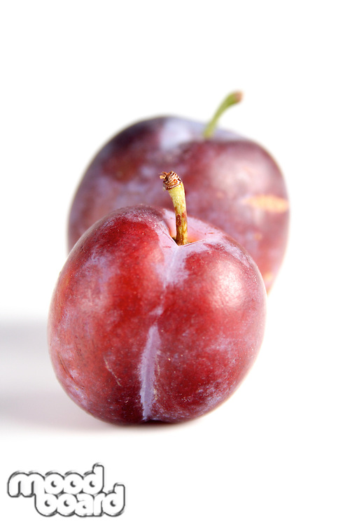 Studio shot of plums on white background