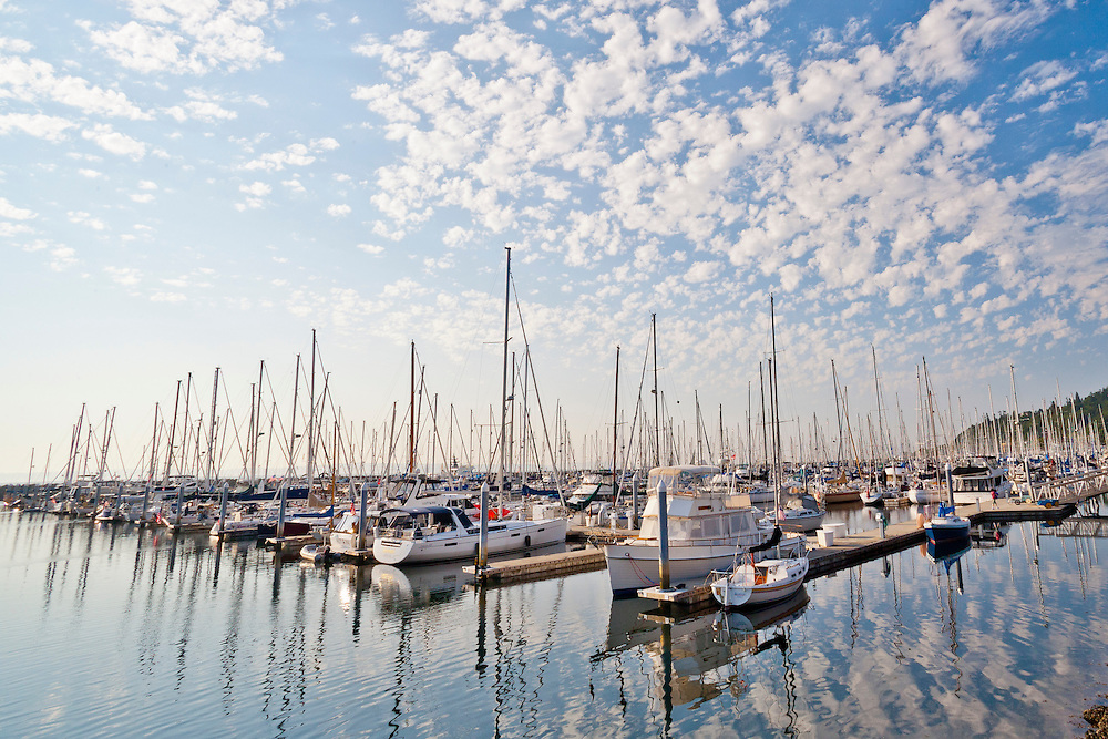 United States, Washington, Seattle. Sailboats moored at Shilshole Bay marina.