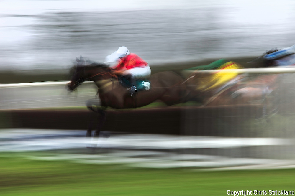 Horse 'Indigo Island' of the Flint and Denbigh hunt jumps a fence in the Open Maiden race.