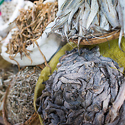 NYAUNG-U, Myanmar - Dried and salted fish on display at a stall at Nyaung-U Market, near Bagan, Myanmar (Burma).