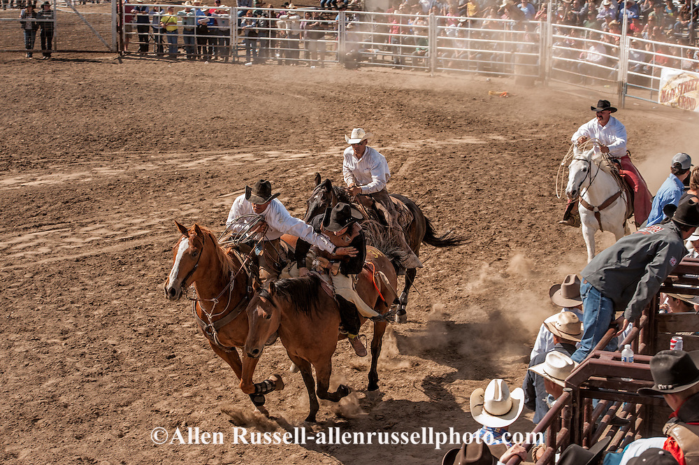 Miles City Bucking Horse Sale, pickup men, Brent Morrison, Jay Shaw, Cody Shaw, bareback bronc, Montana, MODEL RELEASED, PROPERTY RELEASED on riders & horses only..