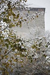 25.10.2010, Kaprun, AUT, Wintereinbruch Salzburger Land, im Bild Ahorn Baum in herbstlichen Farben in Schnee geüllt, im Hintergrund ein mittelalterlicher Burgturm, EXPA Pictures © 2010, PhotoCredit: EXPA/ J. Feichter