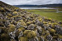 Moss-covered Lava in the hills of Mount Staðarhnúkur east of Lake Langavatn, West Iceland. Mosagróið hraun í hlíðum Staðarhnúks austan við Langavatn.