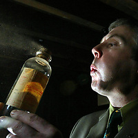 Derek Brown, Brands Heritage Manager dusts off bottles in the cellar of Glenturret Distillery in Crieff where they will be holding a whisky sale.<br /><br />Picture by Graeme Hart.<br />Copyright Perthshire Picture Agency<br />Tel: 01738 623350  Mobile: 07990 594431