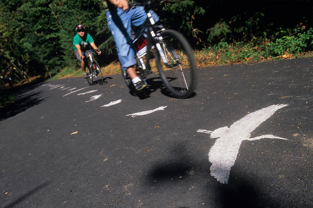 USA, Oregon, Portland,  Recreational bicyclists riding on Springwater Corridor  by painted heron sign on summer day
