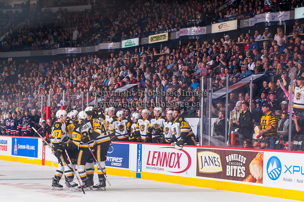 REGINA, SK - MAY 25: The Hamilton Bulldogs celebrate a goal against the Regina Pats at the Brandt Centre on May 25, 2018 in Regina, Canada. (Photo by Marissa Baecker/CHL Images)