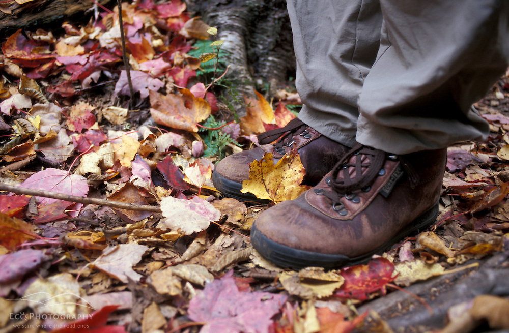 Hiking the Sugarloaf Trail.  Boots and maple leaves. White Mountain National Forest.  Fall. Twin Mountain, NH