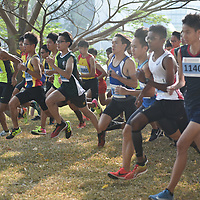 2018 National Schools Cross-Country Championships