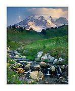 Mount Rainier 14,411ft (4,392m) from Edith Creek, Mount Rainier National Park Washington USA