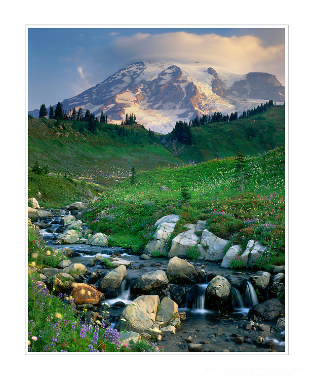 Mount Rainier 14,411 ft (4,392 m) from Edith Creek, Mount Rainier National Park Washington USA