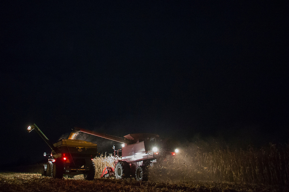 Tom Oegema works into the night to harvest his corn at his farm in Talbotville, Ontario, Monday, November 3, 2014.<br /> Farmers Forum/ Geoff Robins