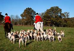 UK ENGLAND SURREY TILFORD 13NOV04 - Huntsman and Whip Ian Shakespeare, sitting on horseback is surrounded by hounds as he prepare for a foxhunt near the village of Tilford in southern Surrey. Foxhunting in rural Surrey with the Surrey Hunters Union, founded in 1798. ........jre/Photo by Jiri Rezac ....© Jiri Rezac 2004....Contact: +44 (0) 7050 110 417..Mobile:  +44 (0) 7801 337 683..Office:  +44 (0) 20 8968 9635....Email:   jiri@jirirezac.com..Web:    www.jirirezac.com....© All images Jiri Rezac 2004 - All rights reserved.